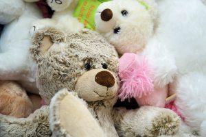 adorable-bears-child-357309